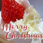 クリスマスに苺ショートプレゼント!【12月23日〜12月25日】
